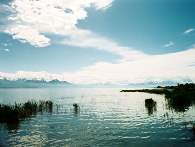 Large Lake With Moss and Blue Skies With Mountain Range in Background