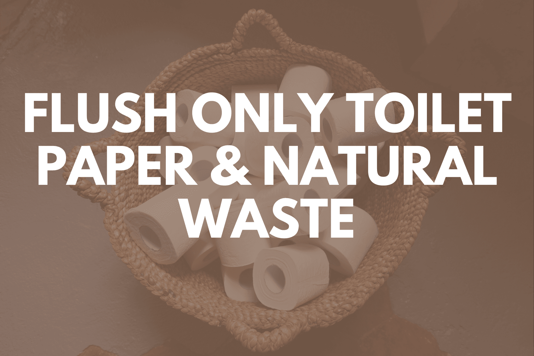 Newsflash  Images - Flush Only Toilet Paper