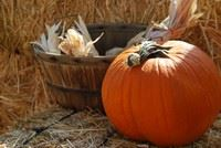 Pumpkin and Autumn Decorations